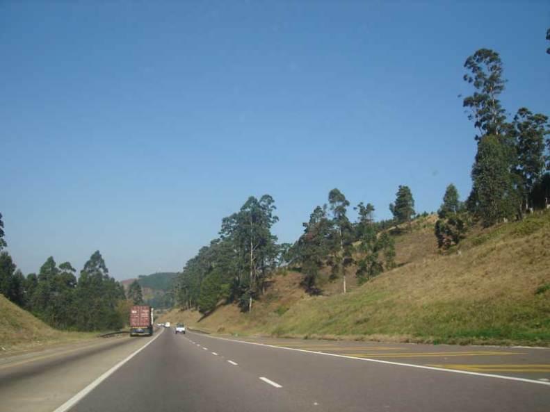 road.camperdown